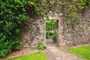ingresso giardino