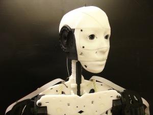 InMoov - esterno cranio
